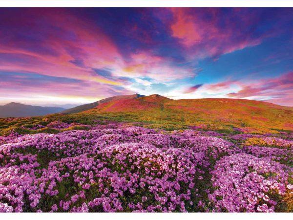 Fotomural Vinilo Montaña Floral Morada | Carteles XXL - Impresión carteleria publicitaria