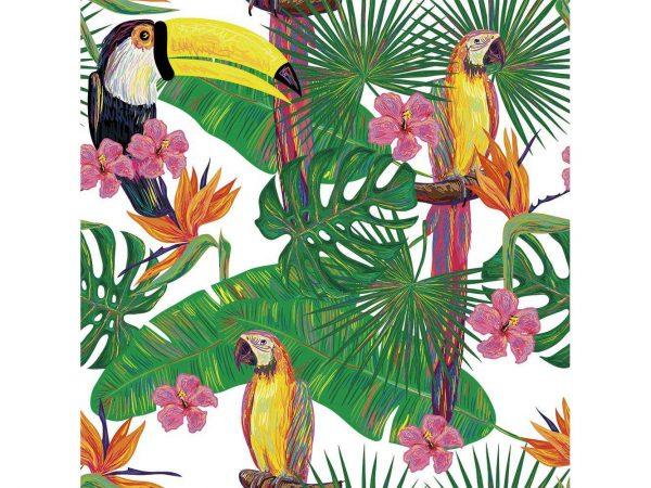 Fotomural Vinilo Tucan y Loro Tropical | Carteles XXL - Impresión carteleria publicitaria