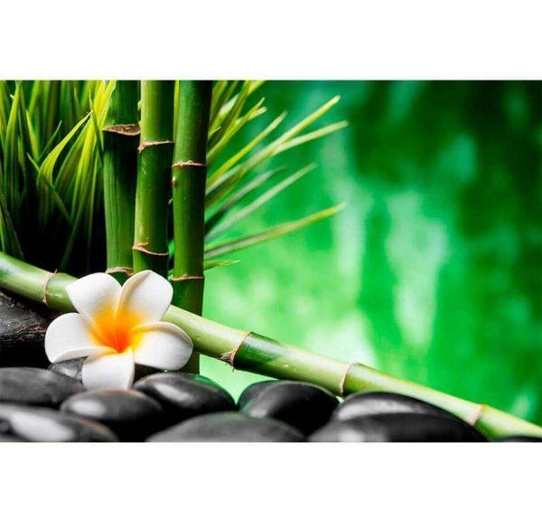 Fotomural Bamboo | Carteles XXL - Impresión carteleria publicitaria
