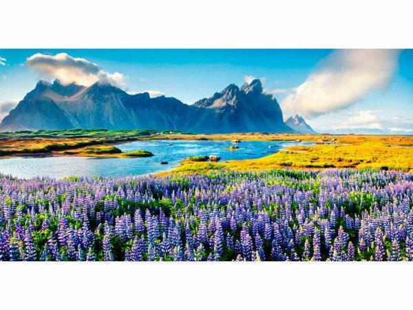 Vinilo Frigorífico Flores Silvestres | Carteles XXL - Impresión carteleria publicitaria