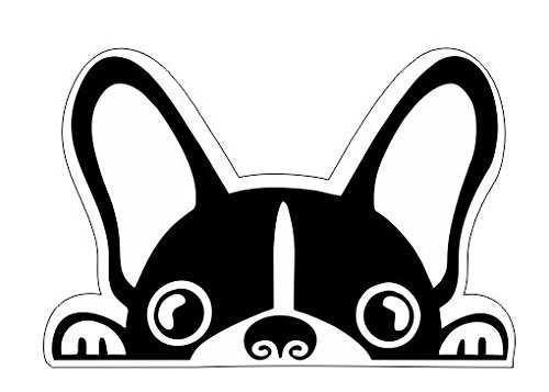 Vinilo Pegatina Perro Bulldog francés | Carteles XXL - Impresión carteleria publicitaria