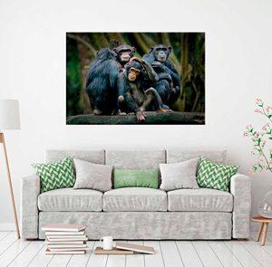 Fotocuadros Animales