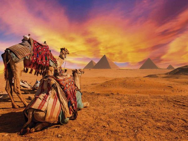 Fotomural Papel Pintado Desierto Egipto   Carteles XXL - Impresión carteleria publicitaria