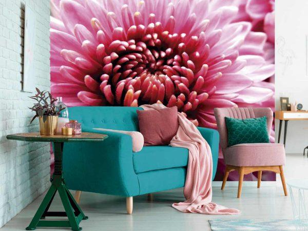 Fotomural Vinilo Crisantemo Rosa | Carteles XXL - Impresión carteleria publicitaria