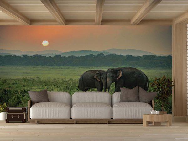 Fotomural Vinilo Elefantes en el Atardecer | Carteles XXL - Impresión carteleria publicitaria