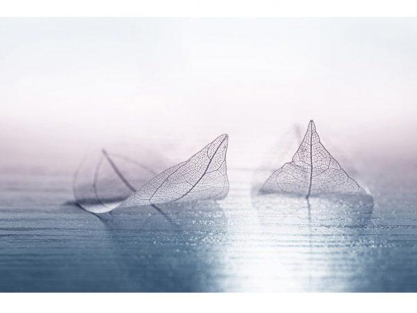 Fotomural Vinilo Hojas sobre Mar | Carteles XXL - Impresión carteleria publicitaria