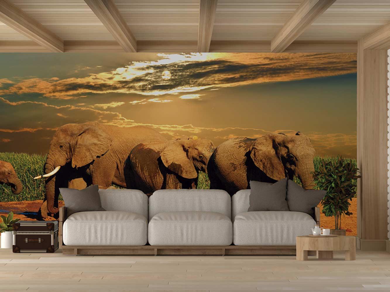 Fotomural Vinilo Parque Addo Sudáfrica | Carteles XXL - Impresión carteleria publicitaria