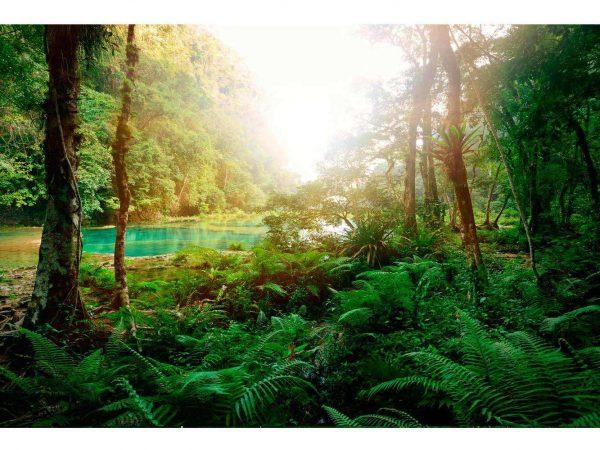 Vinilo Frigorífico Laguna Selva | Carteles XXL - Impresión carteleria publicitaria
