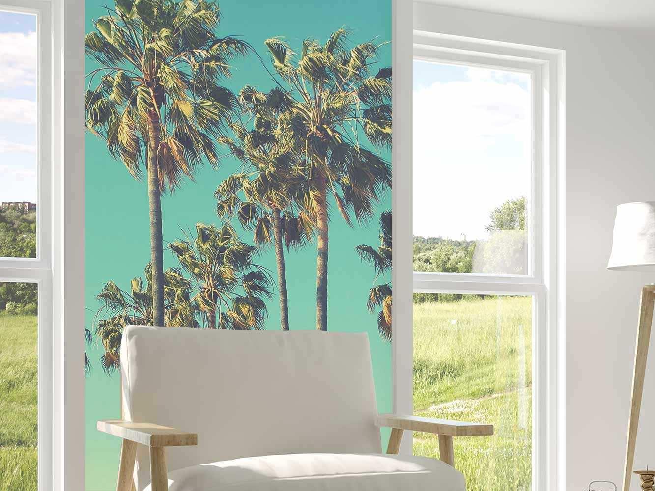 Papel Pintado Palmeras Tropicales | Carteles XXL - Impresión carteleria publicitaria