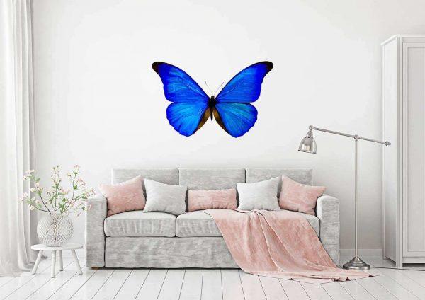 Vinilo Decorativo Mariposa Azul | Carteles XXL - Impresión carteleria publicitaria