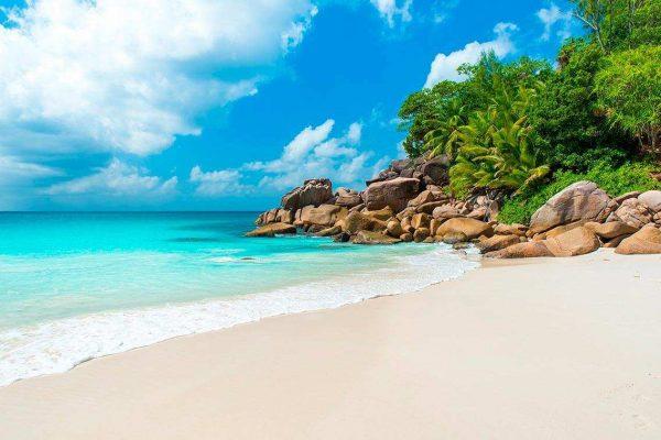 Moqueta Elegante Playa Paradisíaca | Carteles XXL - Impresión carteleria publicitaria