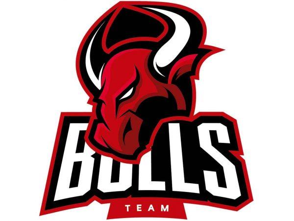 Vinilo Decorativo Puerta Bulls Team | Carteles XXL - Impresión carteleria publicitaria