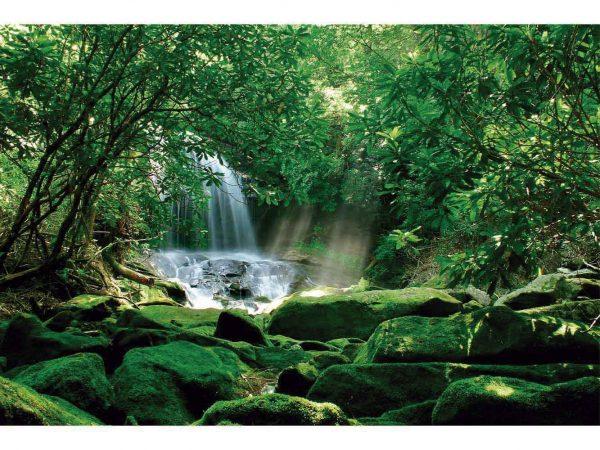 Vinilo Frigorífico Americano Bosque Natural | Carteles XXL - Impresión carteleria publicitaria