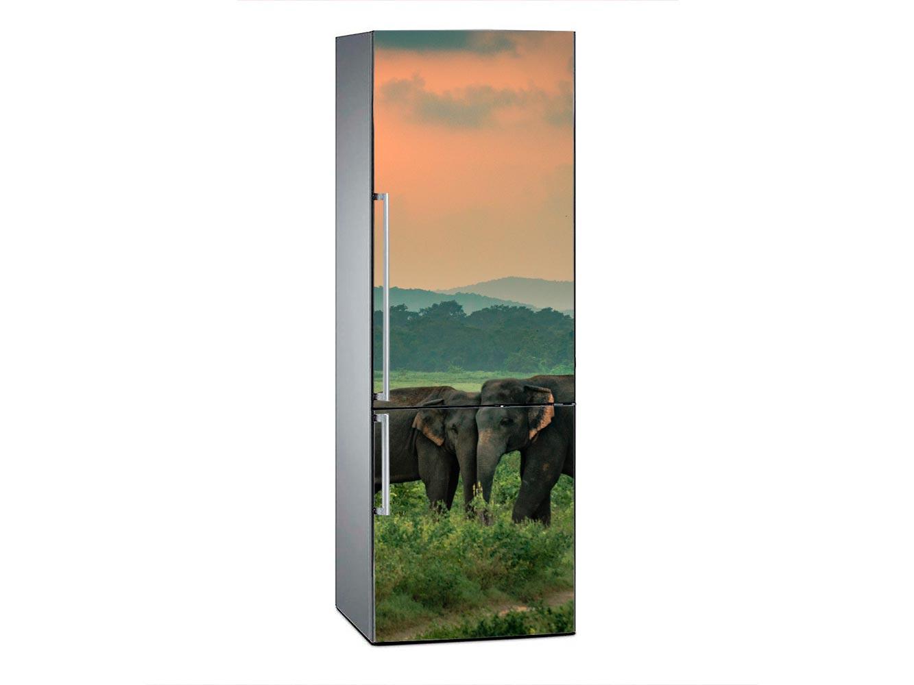 Vinilo Frigorífico Elefantes al Atardecer | Carteles XXL - Impresión carteleria publicitaria