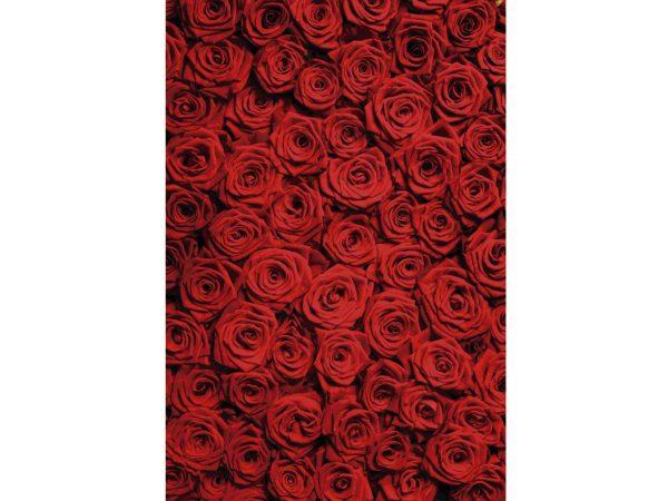 Vinilo Frigorífico Rosas Rojas | Carteles XXL - Impresión carteleria publicitaria
