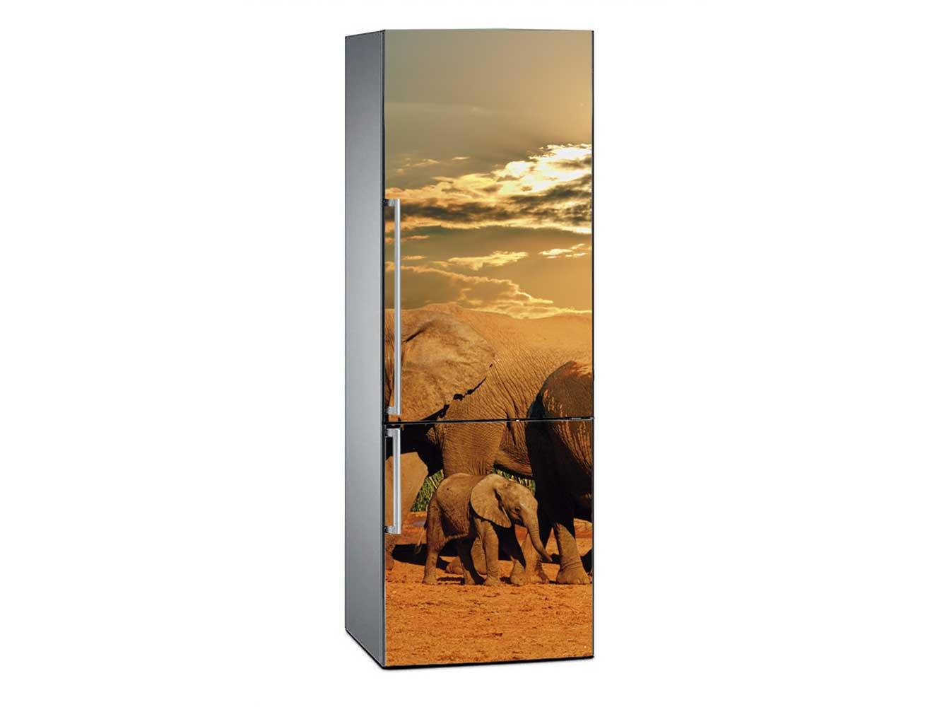 Vinilo Frigorífico Parque del Elefante Sudáfrica | Carteles XXL - Impresión carteleria publicitaria