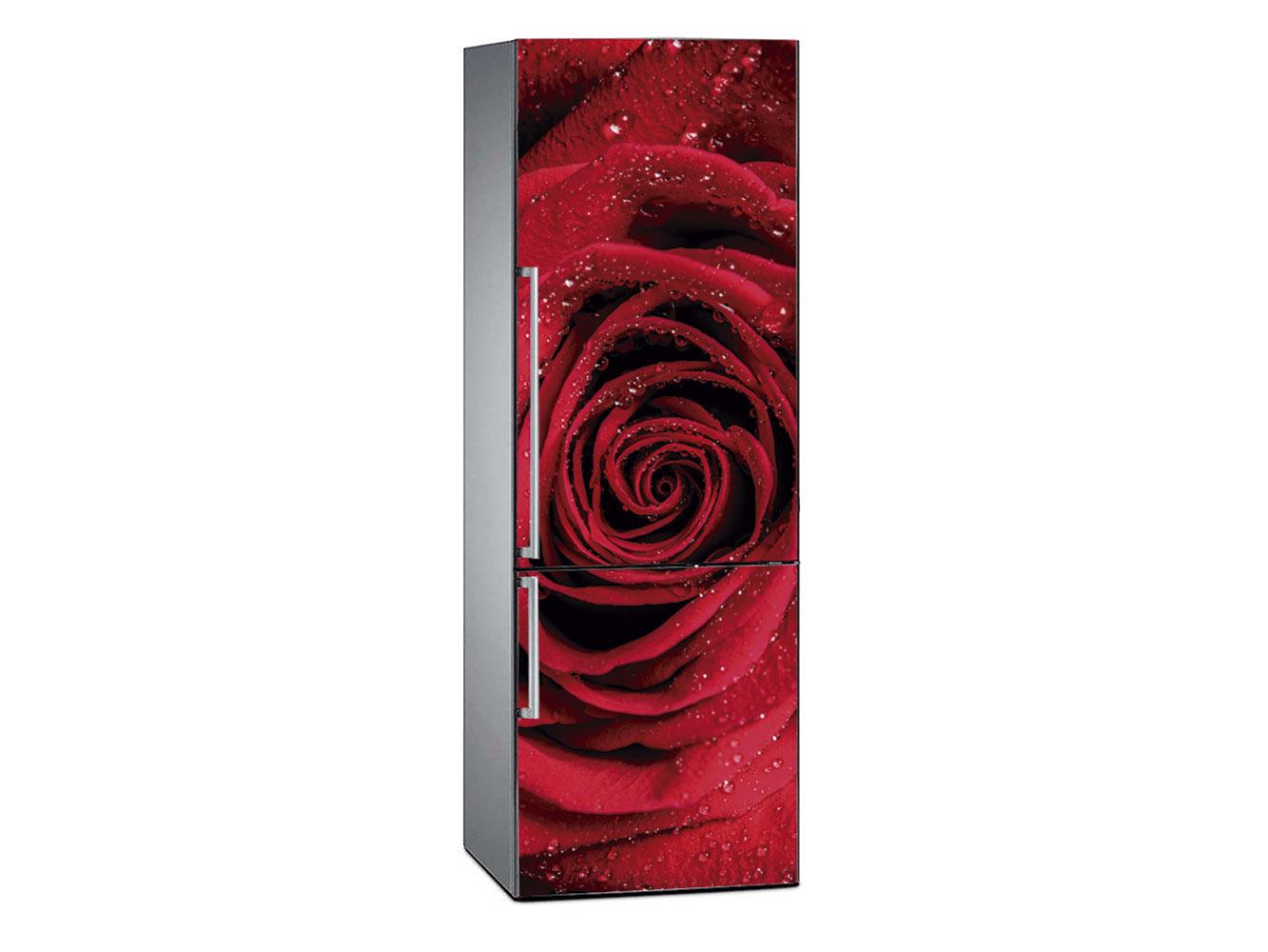 Vinilo Frigorífico Rosa Roja Áurea | Carteles XXL - Impresión carteleria publicitaria