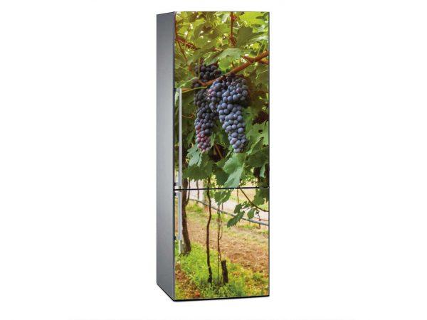 Vinilo Frigorífico Viñas Uvas | Carteles XXL - Impresión carteleria publicitaria