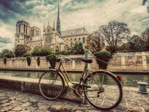 Vinilo Frigorífico Vistas a Notre Dame | Carteles XXL - Impresión carteleria publicitaria