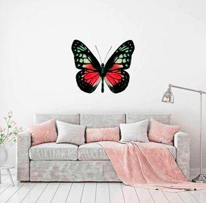 Vinilos de mariposas