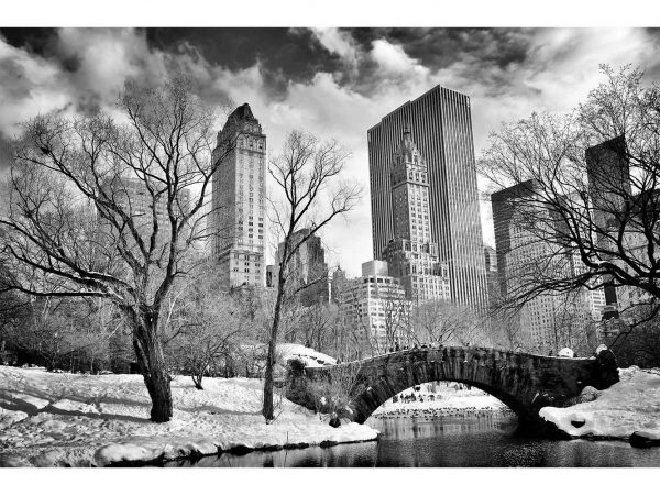 Fotomural Central Park Blanco y Negro | Carteles XXL - Impresión carteleria publicitaria